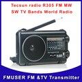Бесплатная Доставка Tecsun радио R305 AM sw fm-радио тв диапазон приемника
