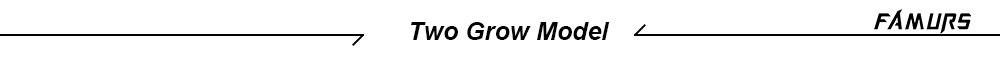 Two-Grow-Model