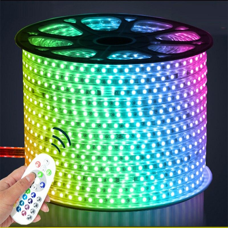 5-15 M 220 V entrée 16 couleurs RGB faible consommation d'énergie haute luminosité 60 LED/m IP65 étanche à l'eau 5050 LED bande