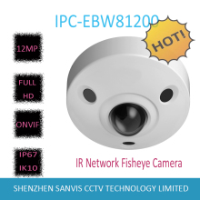 Free Shipping 2016 NEW DAHUA IP Camera 12MP Ultra HD IR Network Fisheye Camera IP67 IK10 with POE Without Logo IPC-EBW81200