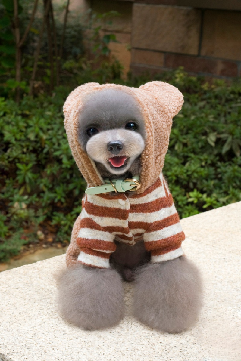 Cute Winter Pet Clothes Keep Warm Dog Clothing Puppy Dog Knit Sweaters Hooded Bear Design Costume For Small Chihuahua Yorkie