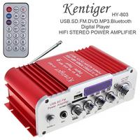 Universal DC12V AC220V AC110V 2CH Bluetooth HI FI Car Audio Amplifier FM Radio Player Support SD