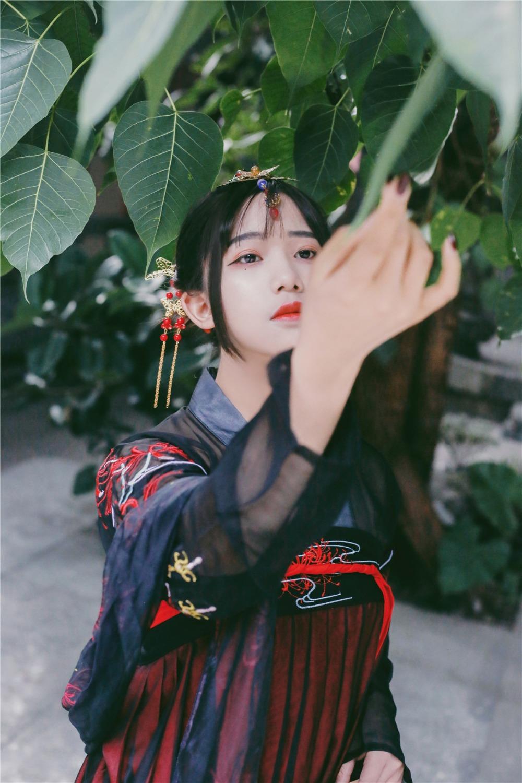Singers Chinese Zeongro Dance 7