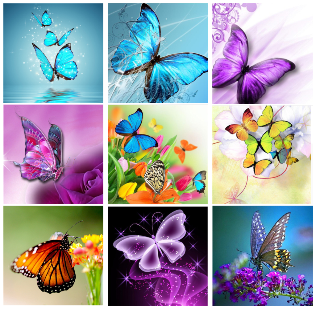 Needlework 5D Diy Diamond Painting Animal Butterfly Cross Stitch Painting Diamond Embroidery Full Square Diamond Pictures