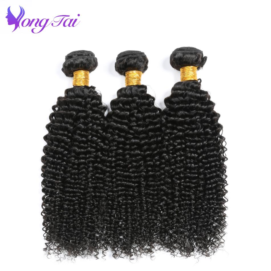Yuyongtai Hair Vendors Malaysia Kinky Curly 100% Remy Human Hair Bundles 6Pcs/Lot Unprocessed Natural Color 10-26 Inch Luster