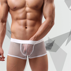 New Boxers Men Mesh See Through Men Underwear Pants Transparent Mesh Sexy Low Waist Breathable Boxers Men 30
