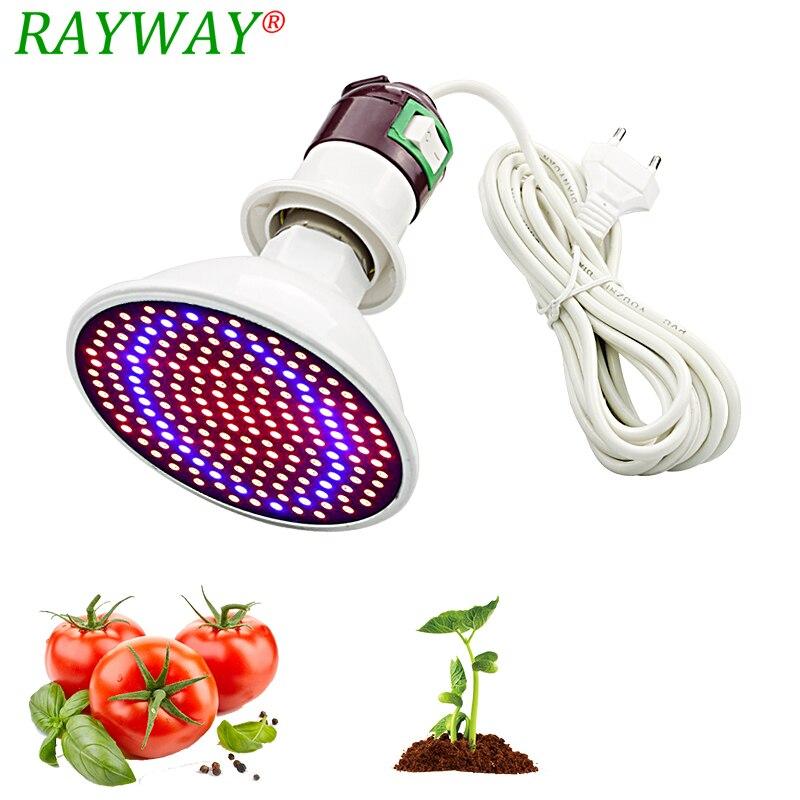 200 Led planta crecer luz lámpara bombillas Ac adaptador de Cable de alimentación de cultivo de flores para interior de efecto invernadero de plántulas de sistema