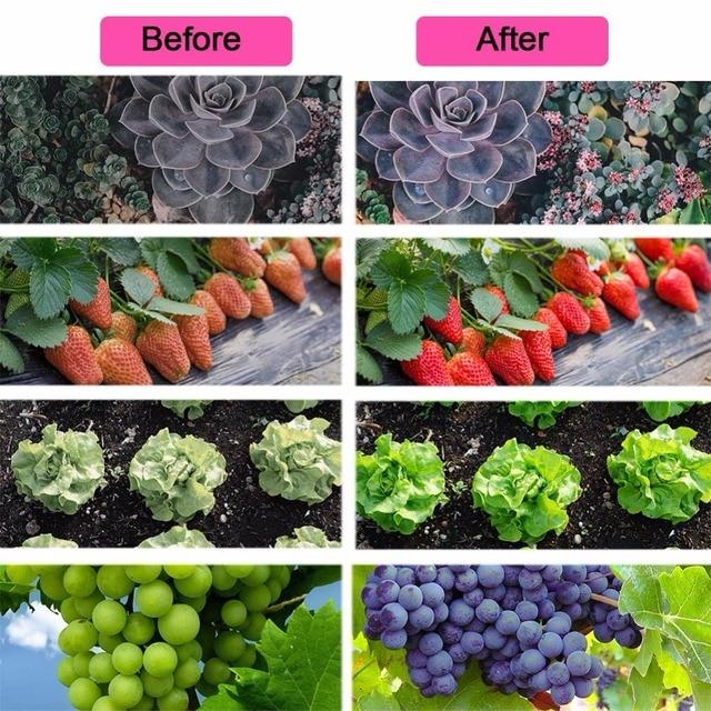 Led Strip Grow Lights for Plants