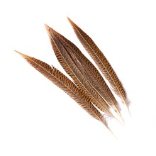 High Quality Natural Chicken Hair 25-30cm Clothing Dress Wedding Crafts Cock Feather DIY Jewelry Dyed Decoration
