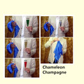 Free Shipping!2 pcs/lot Chameleon Champagne -Magic Trick,fire Accessories,close up magic,mentalism,stage magic props,comedy