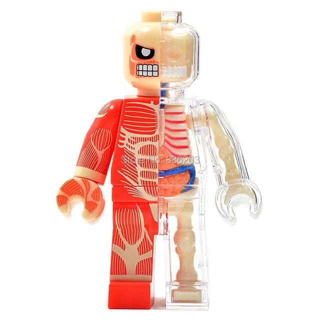 4d Master Vision Muscle Brick Man Funny Anatomy Model Medical Jason