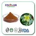 100% natural Mejor Calidad 90% saponinas Tribulus Terrestris Extract Powder Envío libre
