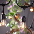 110V/220V E27 Lights Bulb String Lights for Garden Patio Globe Outdoor Indoor Lights String for Party Holiday UL CE Listed Blac