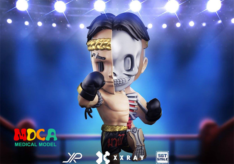 Blue boxer 4D XXRAY master Mighty Jaxx Jason Freeny anatomy Cartoon ornament robin hood 4d xxray master mighty jaxx jason freeny anatomy cartoon ornament