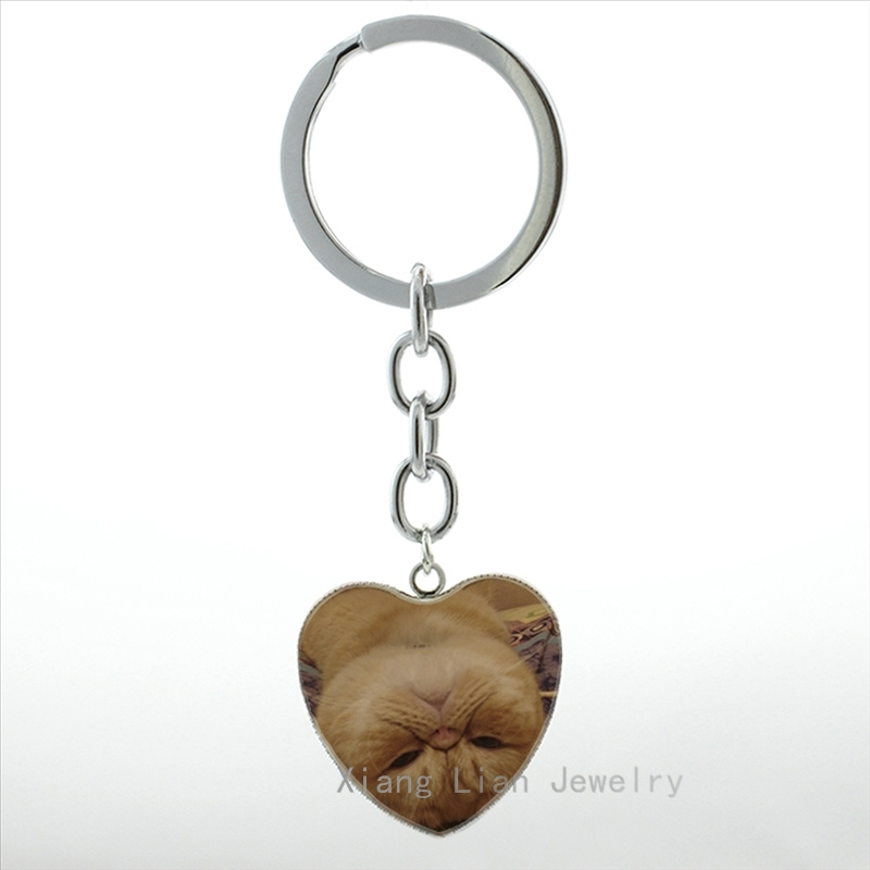 New Cute white Scottish Fold keychain men women animal jewelry Burmese tabby cat himilayan cat lover key chain ring holder HP361