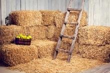 HUAYI fazenda palheiro cenários de fotografia Cenário vinil Cenário adereços Recém-nascidos Fotografia Fundos D-6168
