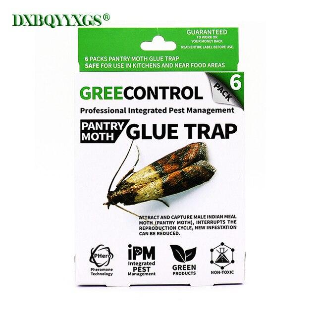DXBQYYXGS 6 PCS trappola trappola per insetti Mole Repeller del parassita rifiut