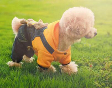Free shipping Cute Puppy Costume for Chihuahua Teddy Cat Puppy Hoodie Winter Pet Dog Clothes Jumpsuit Dog Coat Jacket T086