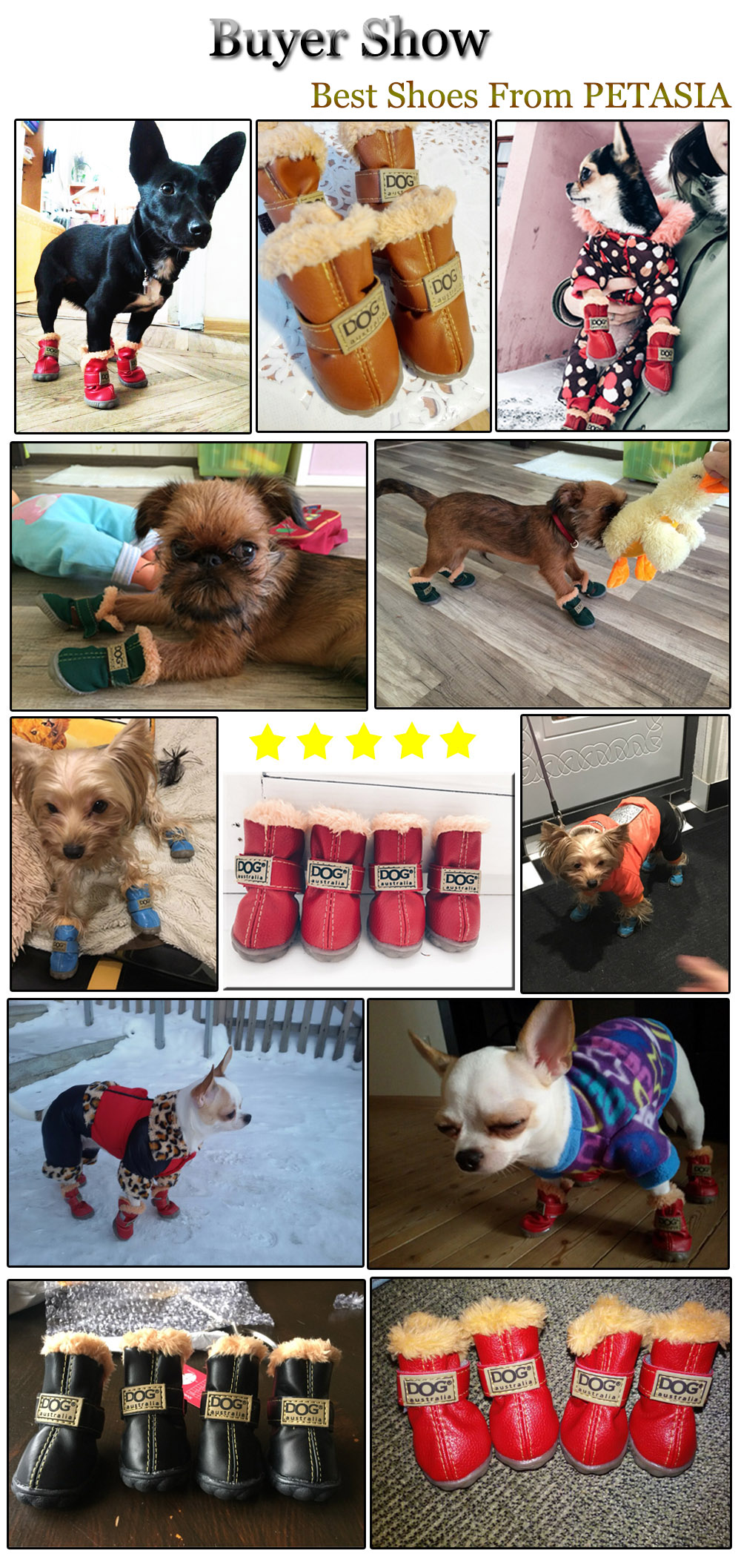 winter dog boots review
