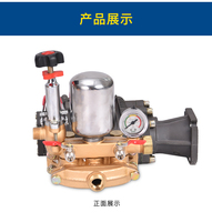 HTP pump, high pressure sprayer pump,FST 25H 2 , garden machine sprayer, agricultural spray pump, cast iron,