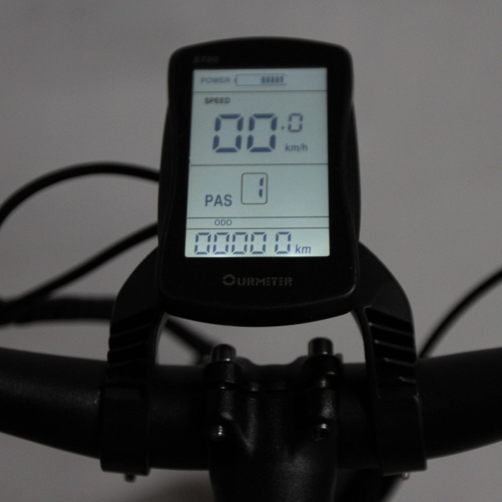 Free Shipping Xf660 1000w 48v 16ah Fat Bike Electric Bike 5