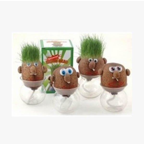 Mini Magic Growing Grass Head Education Toys Random 4PCS Dolls Children Kids Craft DIY Gifts