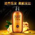 Ginger Extract Nourishing Healthy Hair Without Silicone Oil Shampoo Salubrious Oil-control Itching Scalp Care