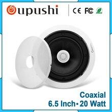 10-20 Вт высокого класса коаксиальный потолочный громкоговорители 6.5 дюймов аудио потолочный громкоговоритель