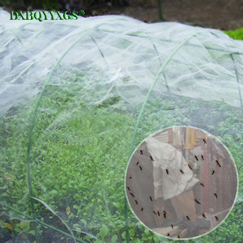 DXBQYYXGS High-density polyethylene 60mesh anti bird net Insect net trap Pest Control Used for orchard vegetable garden ectDXBQYYXGS High-density polyethylene 60mesh anti bird net Insect net trap Pest Control Used for orchard vegetable garden ect