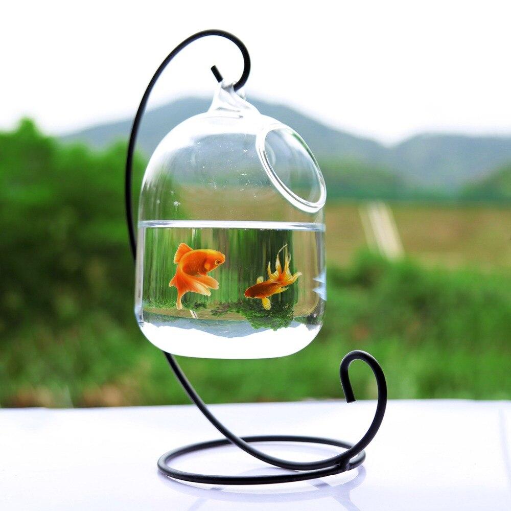 Klar PETFORU 15 cm Höhe Hängen Glas Aquarium Fisch Schüssel Fisch Tank Blume Pflanze Vase mit 23 cm Höhe Weiß rack Fishbowls
