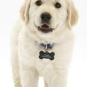 Image 3 - Cá Tính Dog Tag Inox Khắc Tên ID Thẻ Cho Chó Cổ Chống Mất Thú Cưng Bảng Tên Mặt Dây Chuyền Cho Pitbull labrador