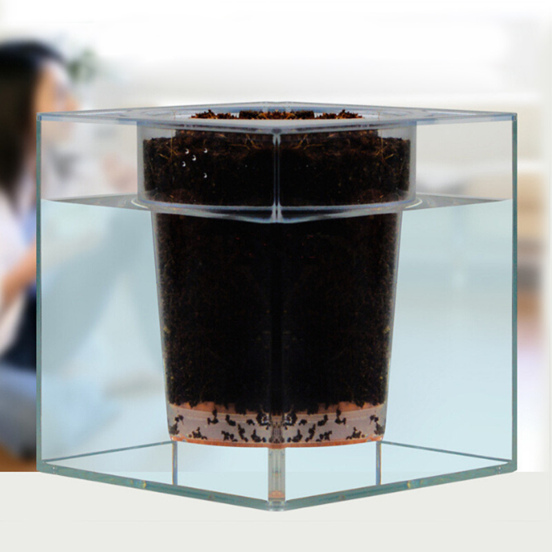 office desk fish tank. creative clear tube plant pot flower decorative selfwatering planter fish tank for office desk