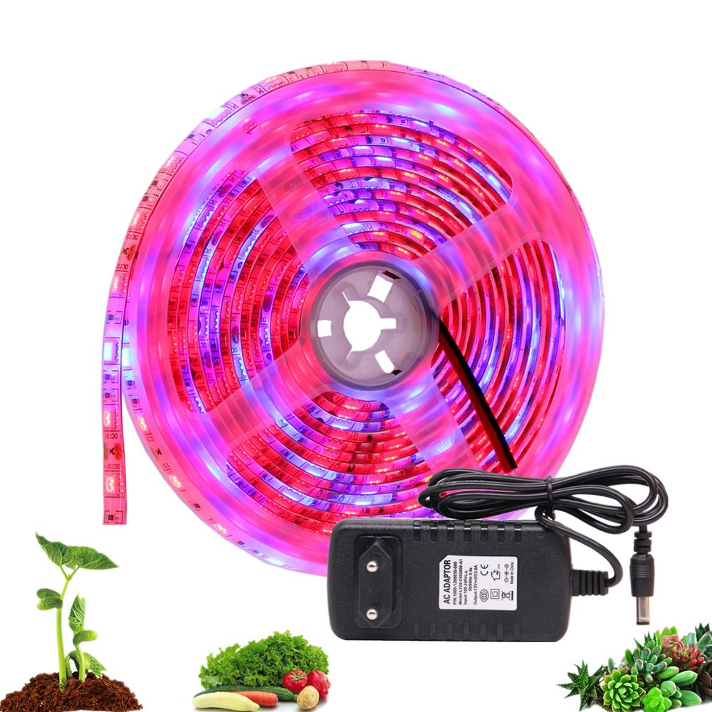 DC 12V LED Grow Light 5M LED Strip Light Flexible Tape 5050 LED Phyto Plant Growth Lamps For Greenhouse Hydroponic Plant Growing