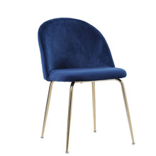 Nordic Style Metal Beetle Dining Chair Modern Minimalist Cafe Restaurant Chair Creative Leisure Computer Chair(China)