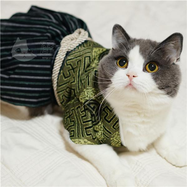 japan style kimono samurai pet cat clothes cat costumes pet dog overalls clothing for small dog. Black Bedroom Furniture Sets. Home Design Ideas