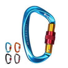 25KN Professional Carabiner Climbing buckle D Shape Security Safety Master Lock Outdoor Rock Buckle Equipment