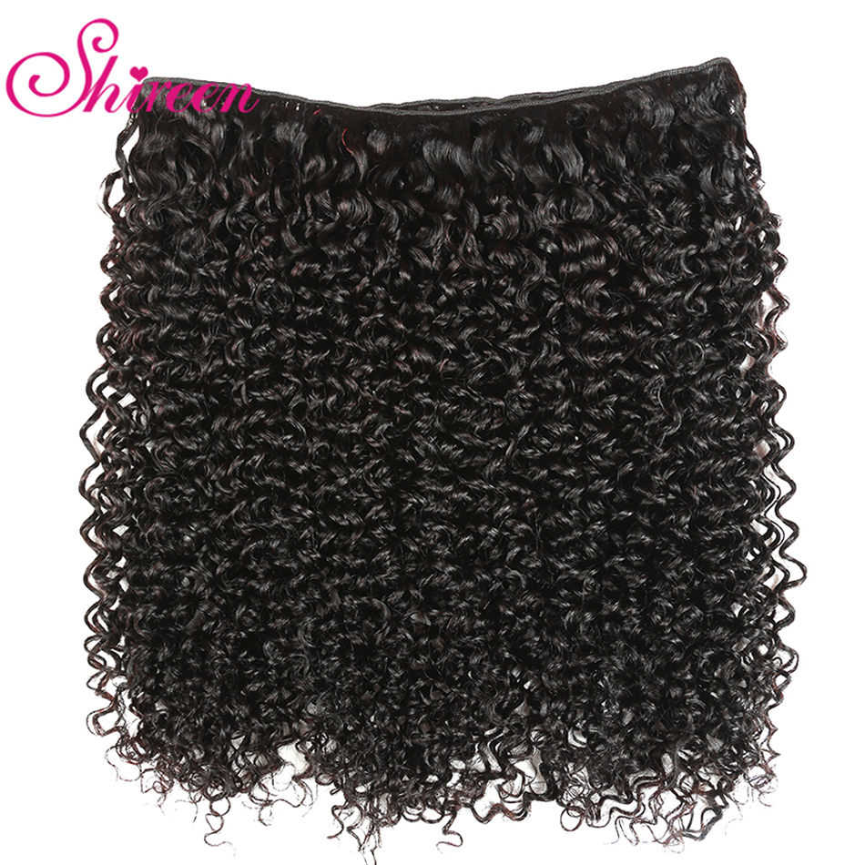 HTB1EZHhX5frK1RjSspbq6A4pFXaA Shireen Brazilian Kinky Curly Bundles with Closure Natural Color Remy Bundles of Hair with Closure 4 Piece Bundles with Closure