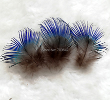 200pcs/Lot Approx 2-4cm  Vibrant Iridescent BLUE PEACOCK BODY PLUMAGE FEATHERS,Small Peacock feathers for Jewelry Making