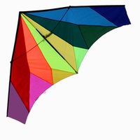 Professional Outdoor Fun Sports 2.4m Power Diamond Rainbow Delta Kite/Huge Kites With Handle and Line Good Flying