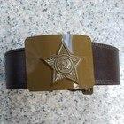 Russia USSR Badge Vi...