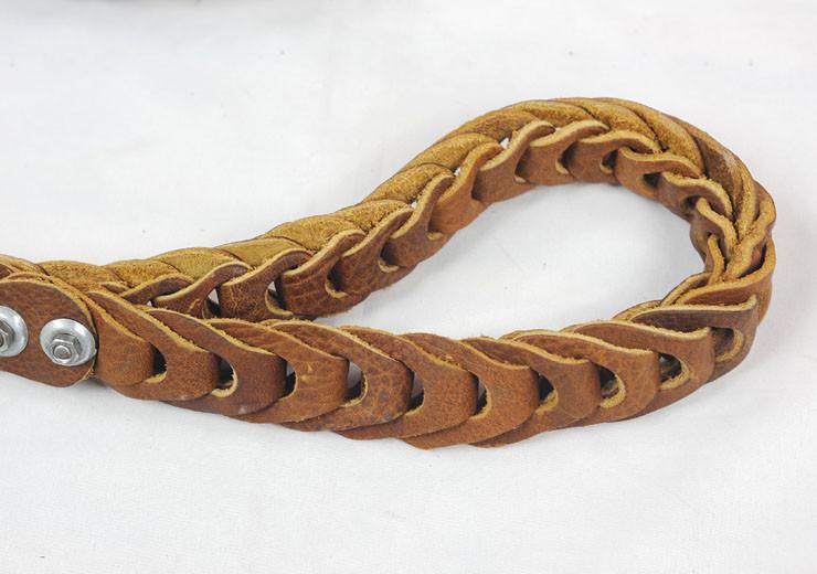 large dog leash (12)