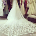 2016 New design velo de novia Appliques 1 T  Cathedral Long Lace Edge Purfles Black Bridal Wedding Veils Mantilla With Comb