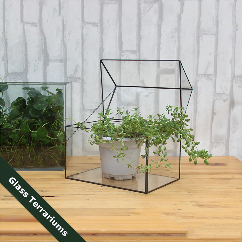 Victorian Palm House Tabletop Terrarium Source · Modern Glass Big House  With Key Chain Tabletop Succulent Plant