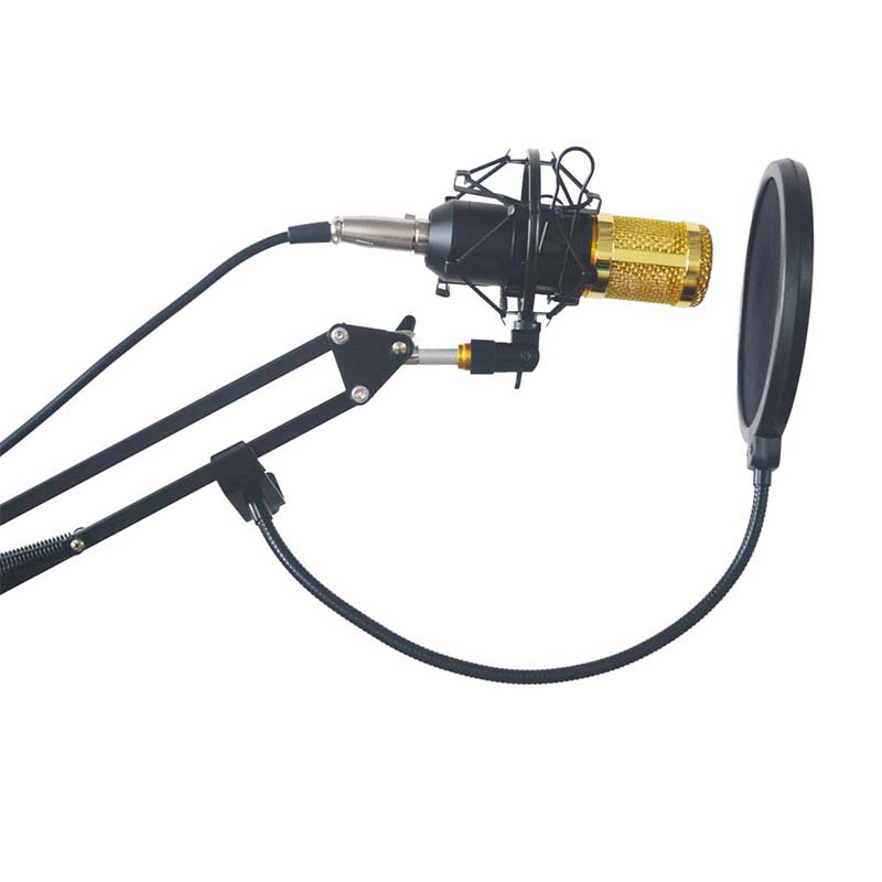 Mic Sound Recording Kit BM-800 Audio Processing Condenser Wired Microphone  Wind Screen Pop Filter edward l keenan josef dobrovsky and the origins of the igor tale