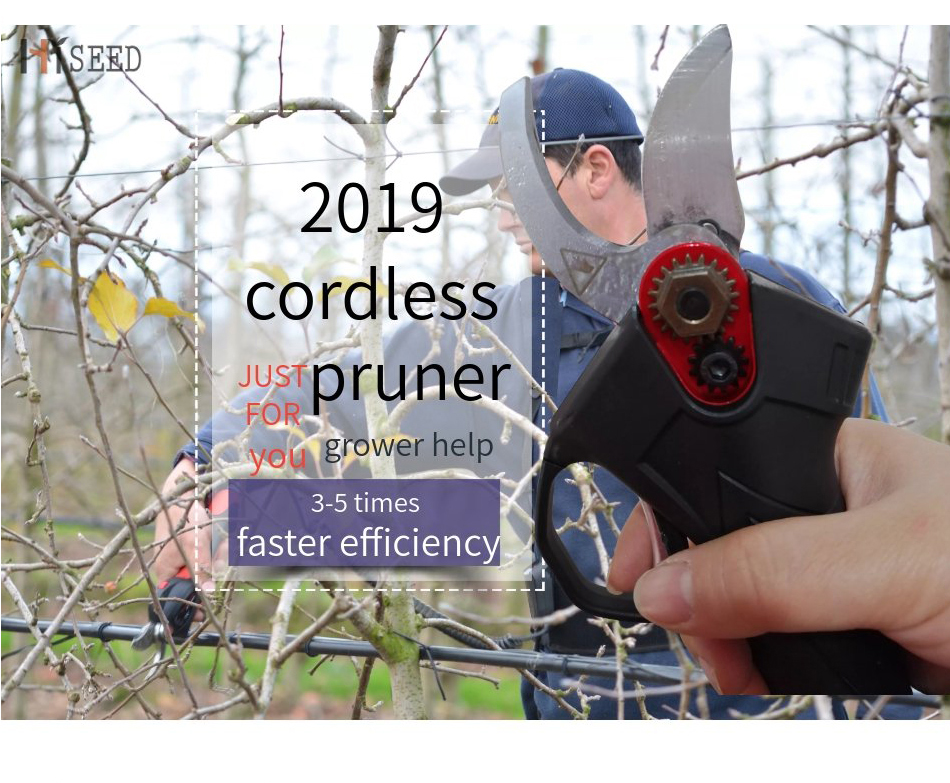HTB1E bCaPDuK1RjSszdq6xGLpXaS - cordless batteries pruner pruning shears