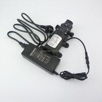 Nuotrilin 60W Small Electric Diaphragm Self Priming High Pressure 12 V 24v Mini Water Pump Automatic