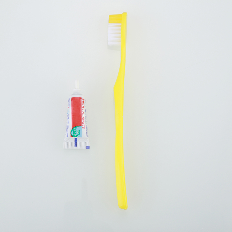 Portable Disposable Toothbrushes With Toothpaste For ...