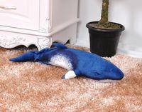 new plush cartoon shark toy cute dark blue whale doll gift about 55x25cm 2724