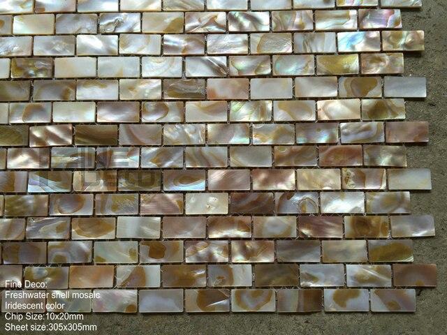 Natuurlijke irridescent kleur natuurlijke zoetwater shell
