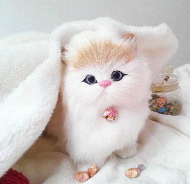 Genuine Cony Fur Hand craft Artificial Cat Plush Toy Cute